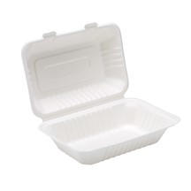 Bagasse Clamshell Lunch Box